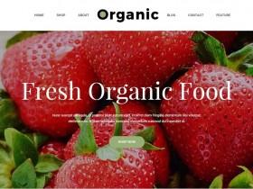 植物/花卉/有機食板HTML5摸板TA17X03